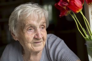 senior woman in gray sweater next to red flowers in vase | Milwaukee Nursing Home Fraud Attorney
